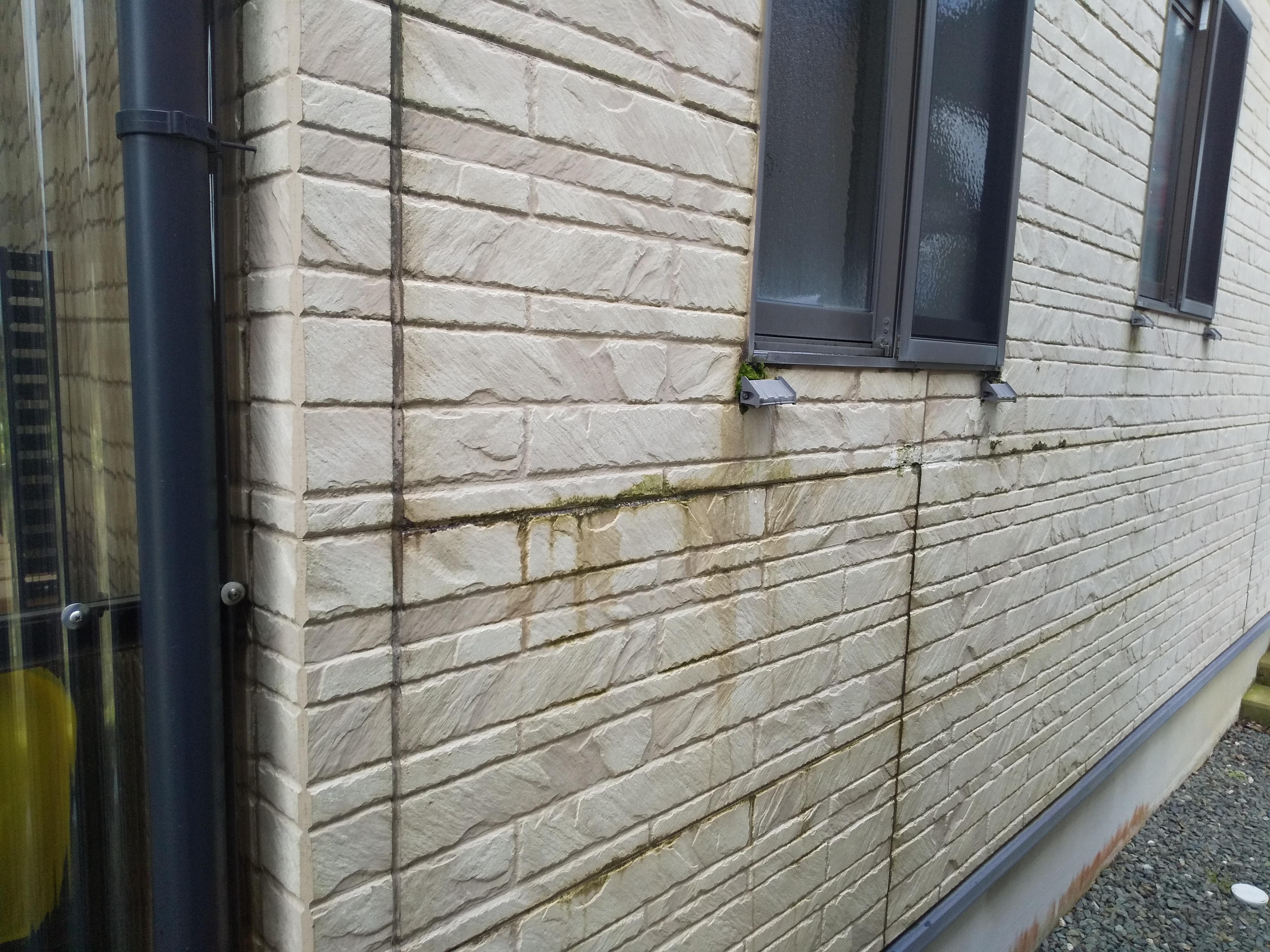 外壁現地調査:西面水まわりのコケや剥がれ、北面風当たり強く痛みが激しいとご相談